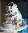 Клуб для тех, кто обожает торты и пирожные