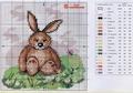 еще кролик