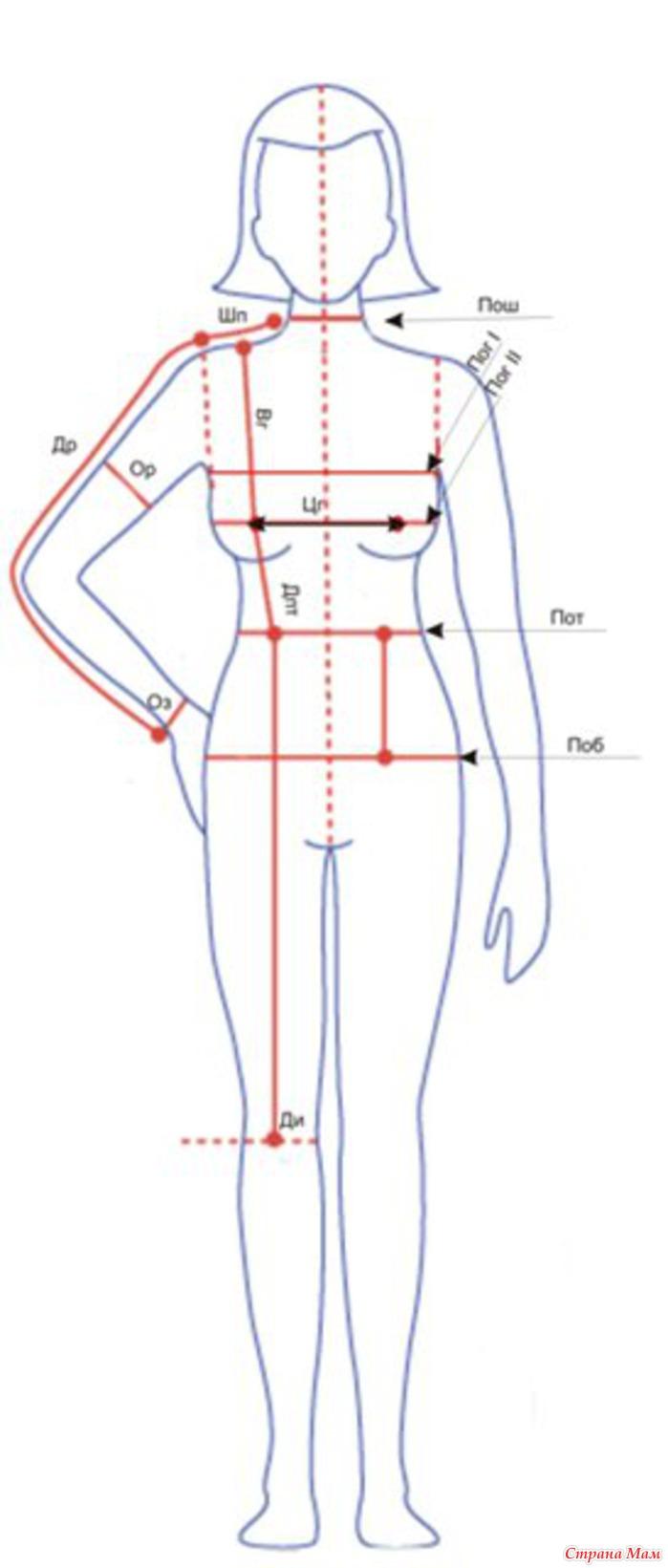 Какие мерки нужно для того что бы сшить платья