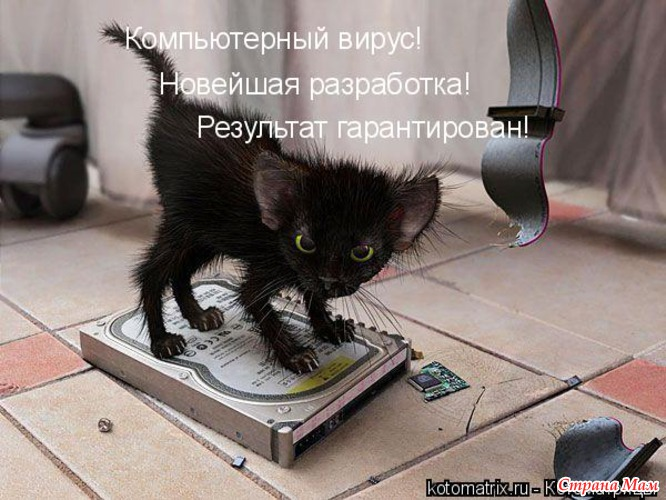 http://st1.stranamam.ru/data/cache/2011apr/30/09/1849477_47968-550x500.jpg