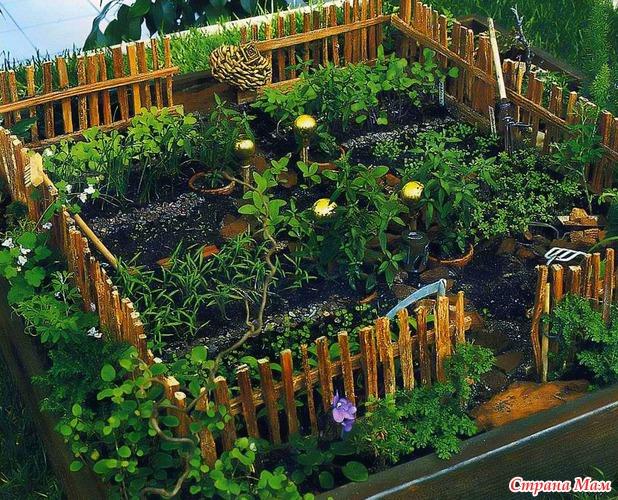 Огороды на участке в детском саду своими руками