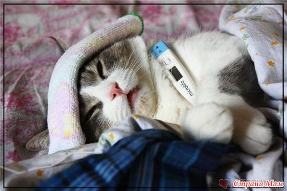 какая температура тела бывает ночьб у спящих людей