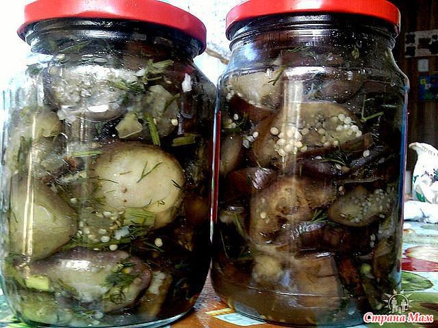 маринованные баклажаны целые рецепты с фото