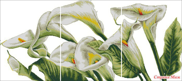 <триптих каллы - Самое