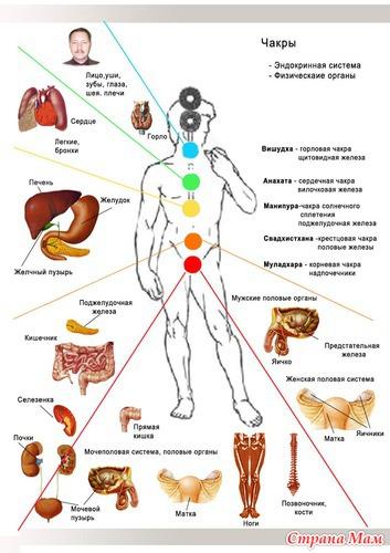 Как связаны чакры и болезни