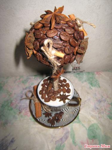 Сколько стоит кофейное дерево своими руками 27