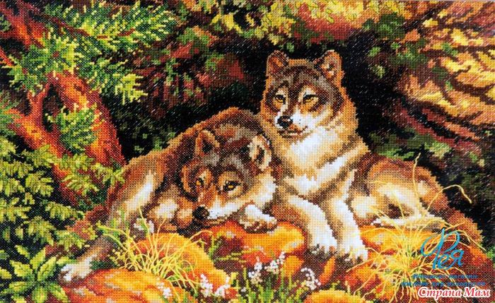 Ищу пару волков