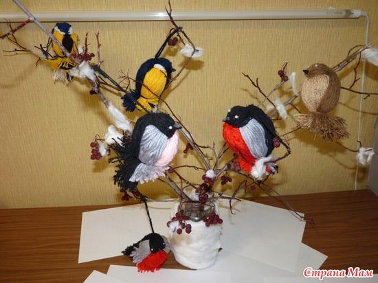 Смотрят птиц в саду своими руками