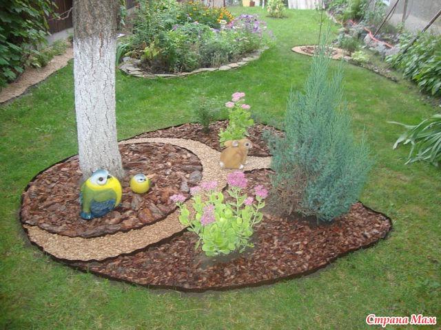 Круги под деревьями оставлять чистыми или засеять травой