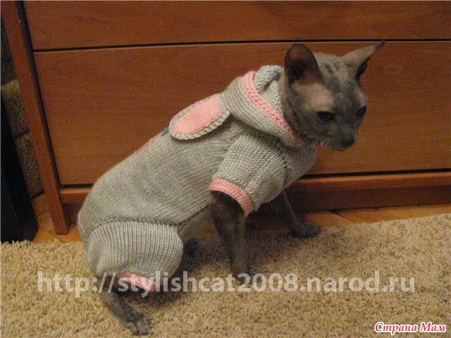 Вязание кофта для кошки 370