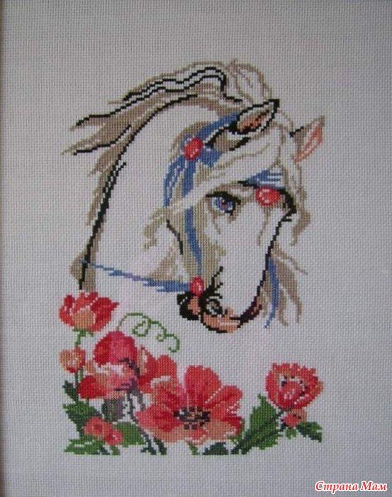 Лошадь в маках + конь