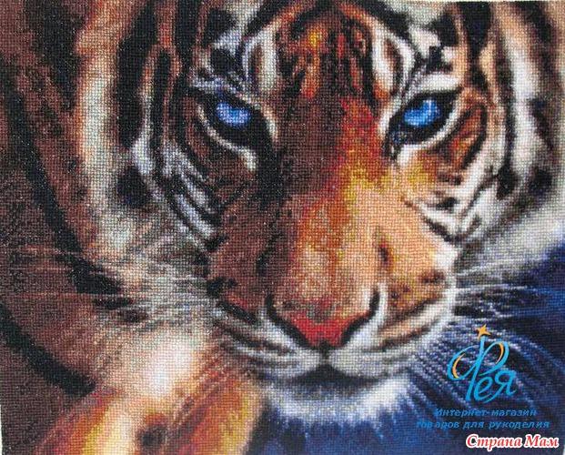 Голубоглазый тигр (Kustom