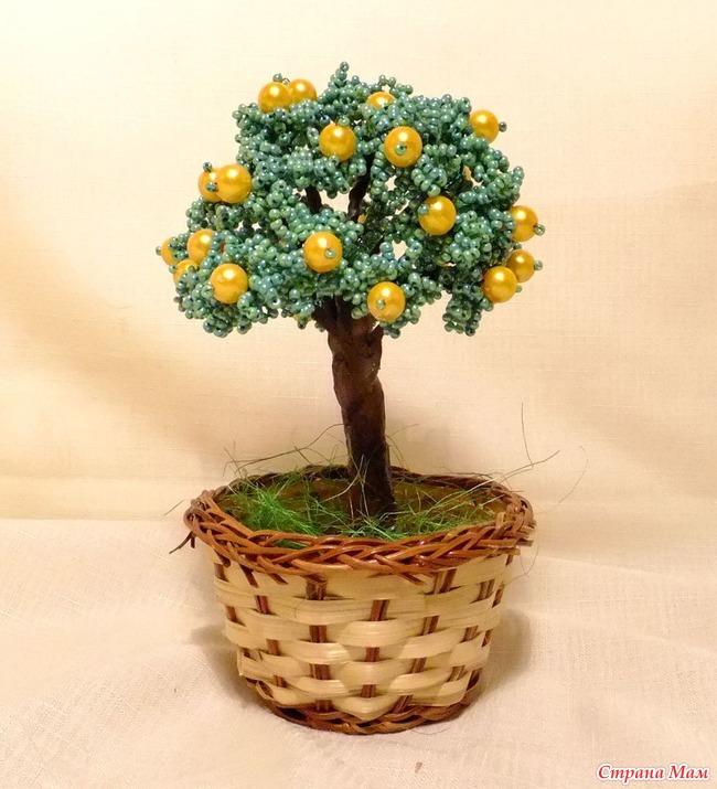 Апельсиновое дерево своими руками мастер класс