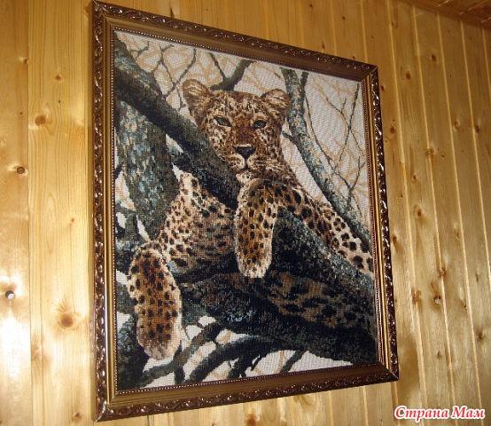 Мой леопард