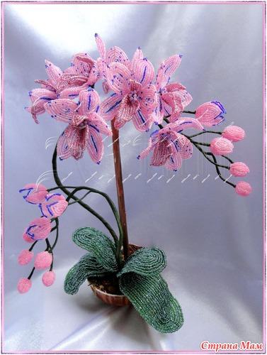Орхидея из бисера цветы из бисера