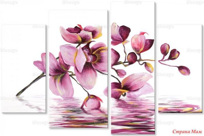 Ищу схему орхидеи