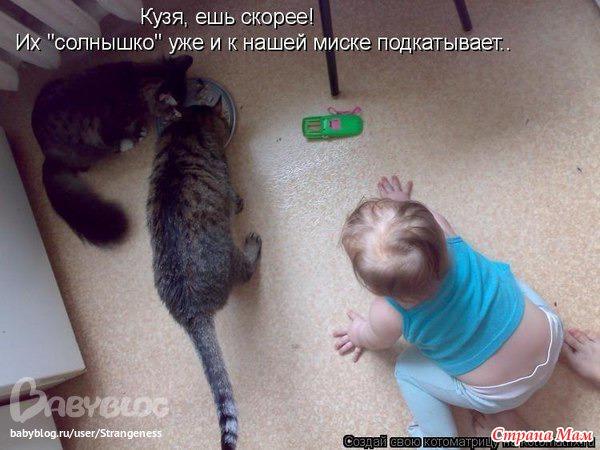 Если ребенок есть из миски кота это проблемы
