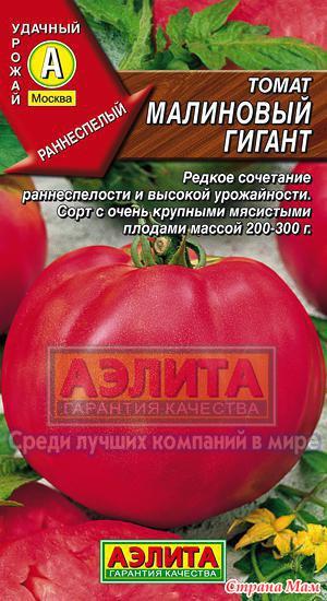 малиновый гигант томат фото отзывы