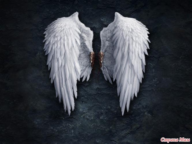 картинка ангелочка с крыльями