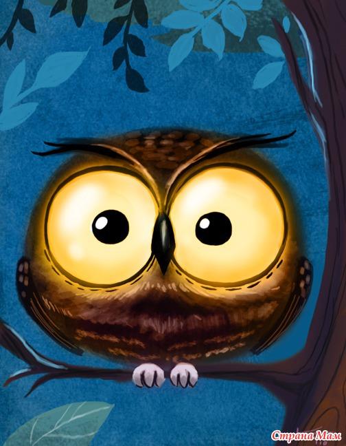 Фото совы нарисованные прикольные