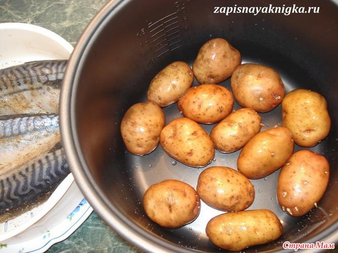 Блюда из картошки в мультиварке рецепты с фото