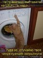 Блог - Привет.ру - Ржачные картинки с котами - Личный интернет дневник пользователя oluschka.