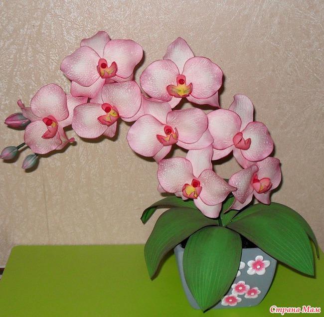 Орхидея фаленопсис - Фом и изделия из него - Страна Мам