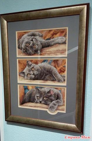 Вышивка крестиком кот макс 41