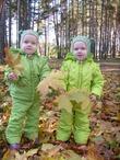 Две капельки весенней зелени среди осени.