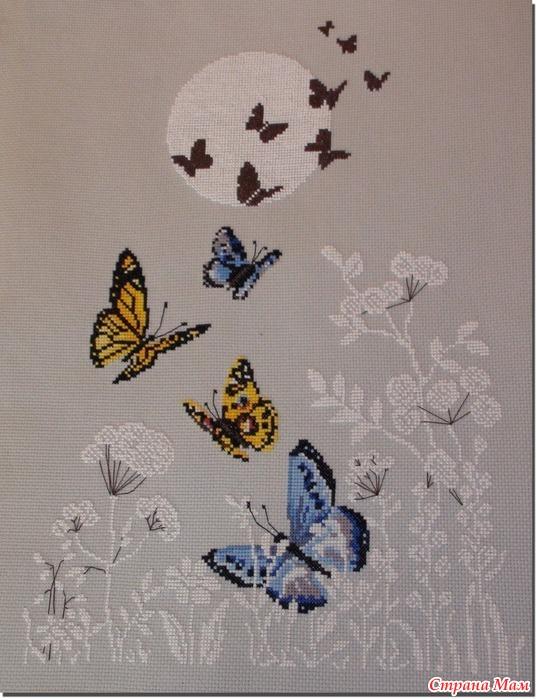 *Цветы и бабочки (схема для