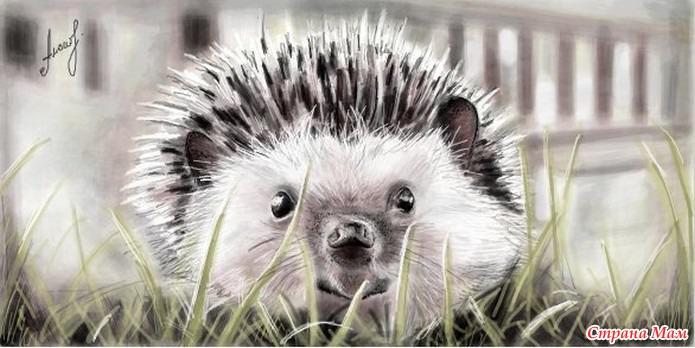 Hedgehog apple minimalism art