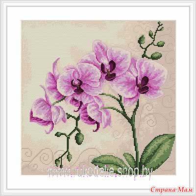 """*""""Орхидея"""" от Luca-S"""