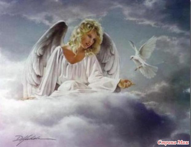 видео мой белый ангел летит