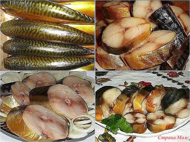 Какую коптить рыбу в домашних условиях