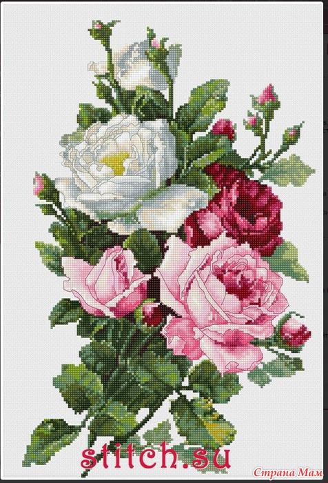 *Букет роз от Luca-S