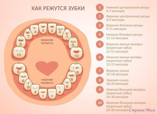 Шоколадный зубной порошок подходит и взрослым и особенно, деткам