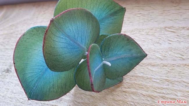 Орхидея из фоамирана своими руками мастер класс фото 664