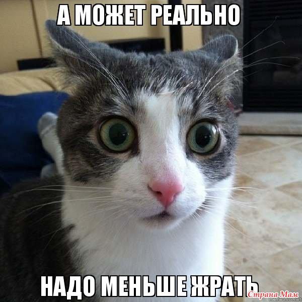 Ти говориш що любиш україну!