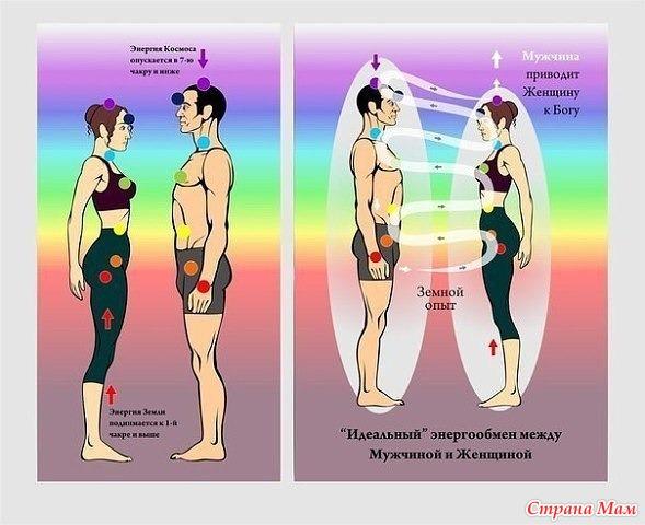 otlichie-muzhskoy-i-zhenskoy-seksualnosti