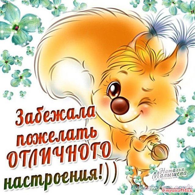 Пожелания хорошего дня короткие и прикольные