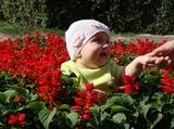Меня в цветочки посадили, а забрать меня забыли... Ну а мне самой смешно, потомучто щекотно
