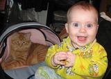 Ура!!! Васька опять мою коляску занял!!! Сегодня я с мамой спать буду!