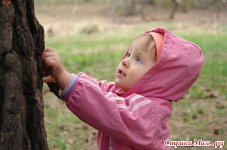 Катя слушает, как дышит дерево...