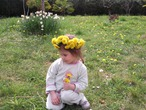 Вот и пришла цветущая весна!
