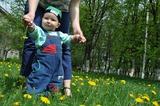 На полянке мы гуляем и цветы собираем