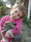 два зайчонка:)