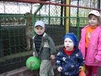 В зоопарке со львом