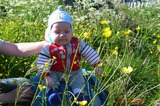 Ой, жёлтенькие цветочки!!