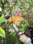 Первые в жизни цветочки!!! Вадиму 6 месяцев.