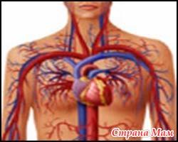 Вегето-сосудистая дистония - типы течения.